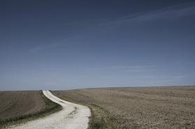 field-path-388913_640